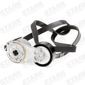 STARK V-ribbed belt kit (SKRBS-1200342)