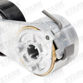STARK FIAT PUNTO Poly v-belt kit (SKRBS-1200342)