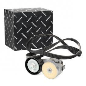 PUNTO (188) RIDEX V-ribbed belt kit 542R0343