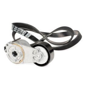 RIDEX V-ribbed belt kit (542R0343)
