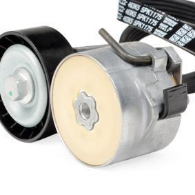 RIDEX FIAT PUNTO Poly v-belt kit (542R0343)