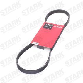 323 P V (BA) STARK Rippenriemen SKPB-0090291