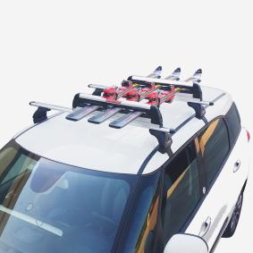 6801900 FABBRI Porte-ski / -snowboard, galerie de toit en ligne à petits prix