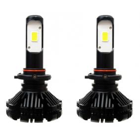 Glühlampe, Nebelscheinwerfer (01078/71733) von AMiO kaufen