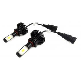 Glühlampe, Nebelscheinwerfer 01078/71733 Online Shop