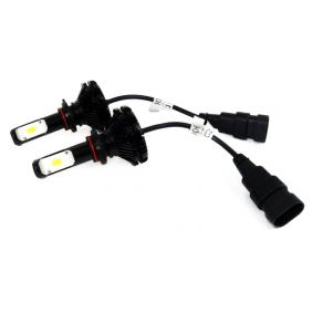 Bulb, fog light 01079/71734 online shop