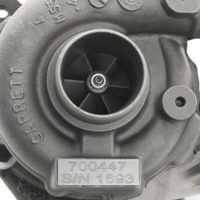 Turbolader RIDEX REMAN (2234C0181R) für BMW 3er Preise