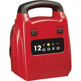 Carregador de baterias para automóveis de AEG: encomende online