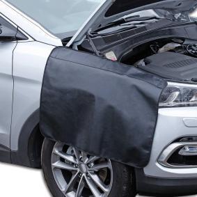 Skärmskydd för bilar från CARTREND: beställ online