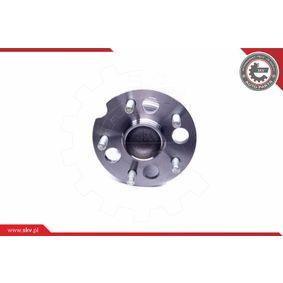 ESEN SKV Wheel hub (29SKV243)