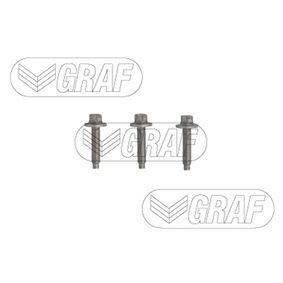 Wasserpumpe GRAF Art.No - PA1369 OEM: 11517586925 für BMW kaufen