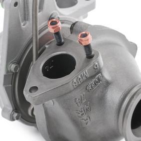 RIDEX REMAN Turbocompresor, sobrealimentación 2234C10095R