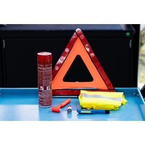 Fire extinguisher for cars from VAICO - cheap price