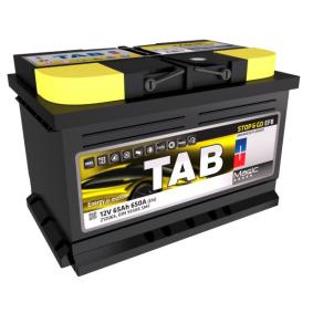 TAB Autobatterie 212065
