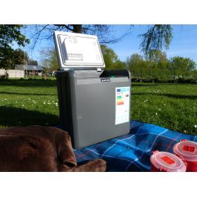 5964 BLACK ICE Refrigerador del coche online a bajo precio