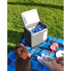 5965 BLACK ICE Хладилник за автомобили евтино онлайн