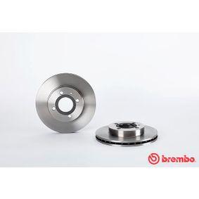 BREMBO Bremsscheibe 60514881 für FIAT, ALFA ROMEO bestellen