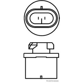 Glühlampe, Fernscheinwerfer 89901301 Online Shop