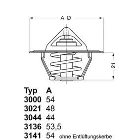 Bobinas de encendido CADILLAC STS Termostato, refrigerante 3000.83