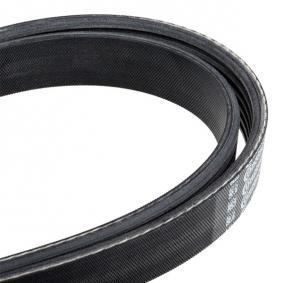 CONTITECH V-Ribbed Belts (6PK2160) at low price