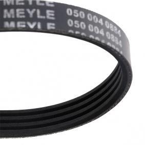X5 (E53) MEYLE Rippenriemen 050 004 0884