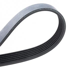 MEYLE V-Ribbed Belts (050 006 2080) at low price