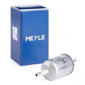 EPICA (KL1_) MEYLE Dieselfilter 100 201 0013