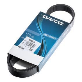 2521204150 für HYUNDAI, KIA, Keilrippenriemen DAYCO (6PK923) Online-Shop