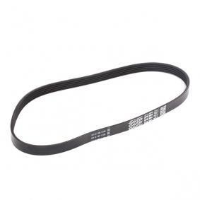 DAYCO Multi v belt 5PK884