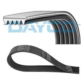 DAYCO TOYOTA RAV 4 Poly v-belt (5PK884)