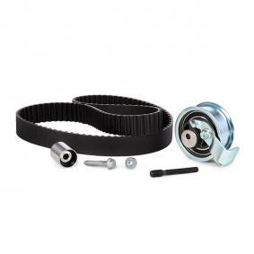 XM216268AA für VW, FORD, FORD USA, Zahnriemensatz INA (530 0091 10) Online-Shop