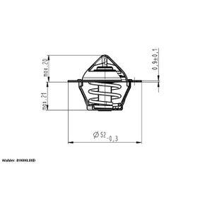 Amortiguadores ROVER 45  Termostato, refrigerante 410808.88D