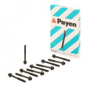 PAYEN Cylinder head bolt kit HBS247