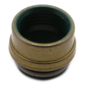 Golf V Хечбек (1K1) REINZ Гумичка на клапан (уплътнение) 70-26058-00