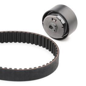 INA Cam belt kit (530 0228 30)