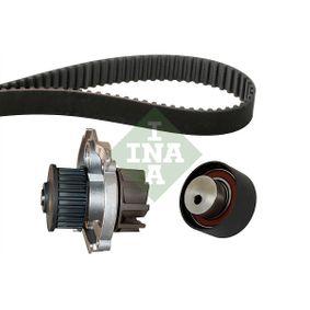 INA FIAT PUNTO Timing belt kit (530 0228 30)