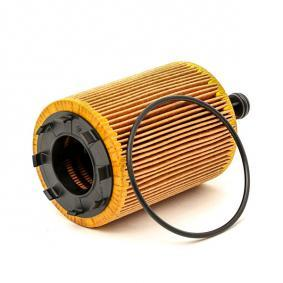 BOSCH Oil Filter 3165143356555