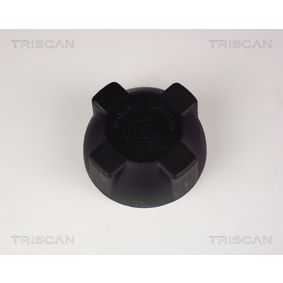 AUDI 80 (8C, B4) TRISCAN Ausgleichsbehälter 8610 10 bestellen