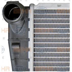 HELLA Kühler Motorkühlung 8MK 376 716-244