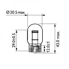12066CP Bulb, brake / tail light from PHILIPS quality parts