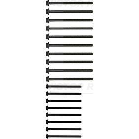 Zylinderkopfschraubensatz 14-32204-01 REINZ
