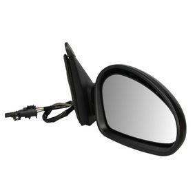 BLIC външно огледало дясно, механичен 5402-04-1138892P в оригиналното качество