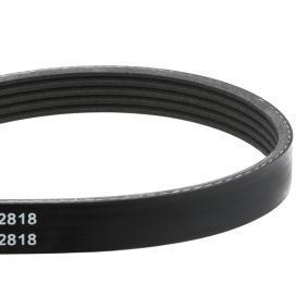 INA Poly v-belt kit 529 0013 10