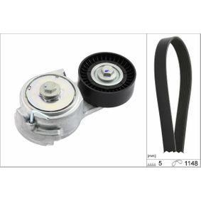 INA V-ribbed belt kit (529 0013 10)