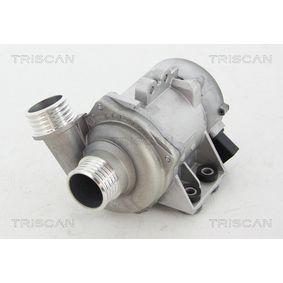 Wasserpumpe TRISCAN Art.No - 8600 11028 OEM: 11517586925 für BMW kaufen