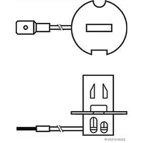Glühlampe, Fernscheinwerfer 89901094 Online Shop