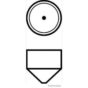 Bulb, licence plate light 89901162 online shop