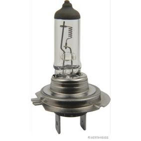 Bulb, spotlight HERTH+BUSS ELPARTS Art.No - 89901207 OEM: 81259010091 for MAN buy
