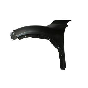Motorhaube und Einzelteile 6802-00-2555451P BLIC