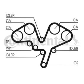 Poly v-belt kit CONTITECH (5PK1145K1) for FIAT PANDA Prices